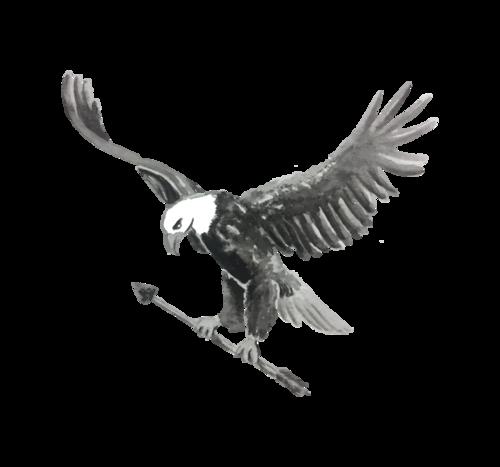 Logotipo de Adler Rudi Da Luz Kernkamp