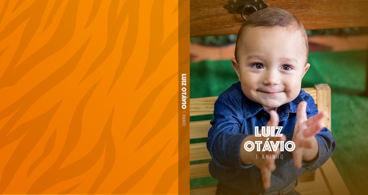 Imagem capa - Álbum Luiz Otávio - 1 ano por Tamires e Bruna