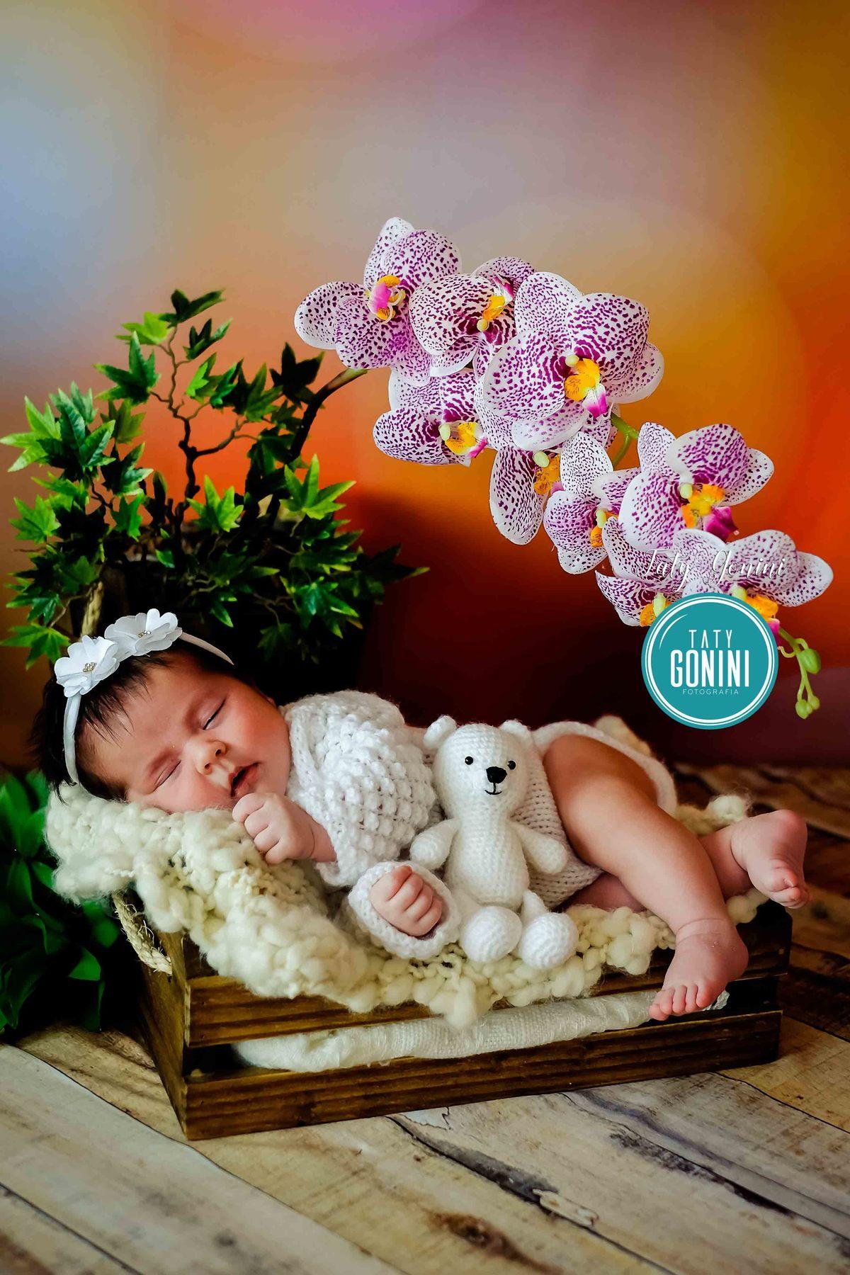 Imagem capa - Qual melhor momento para fotografar Recém nascido ( Newborn ) por Taty Gonini fotografia
