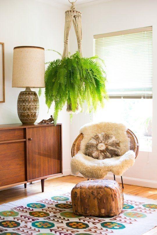 Imagem capa - Plantas no interior da casa - Quais usar? por Kiwi Arquitetura