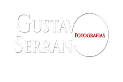 Logotipo de Gustavo Mendes Serrano