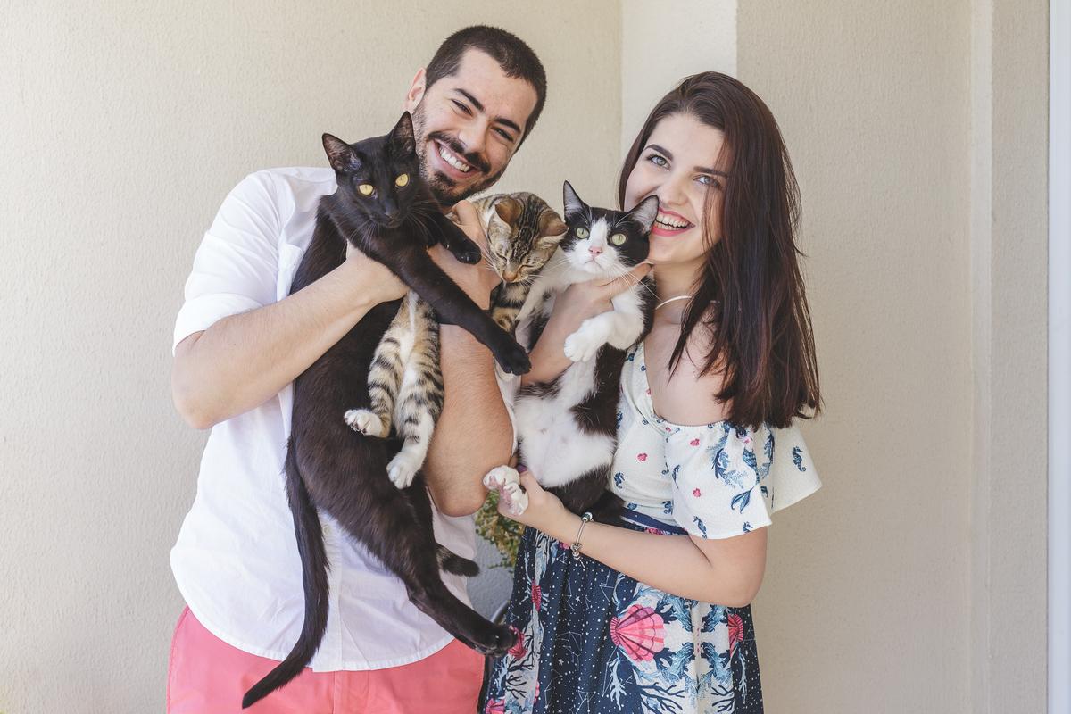 gatos e seus donos