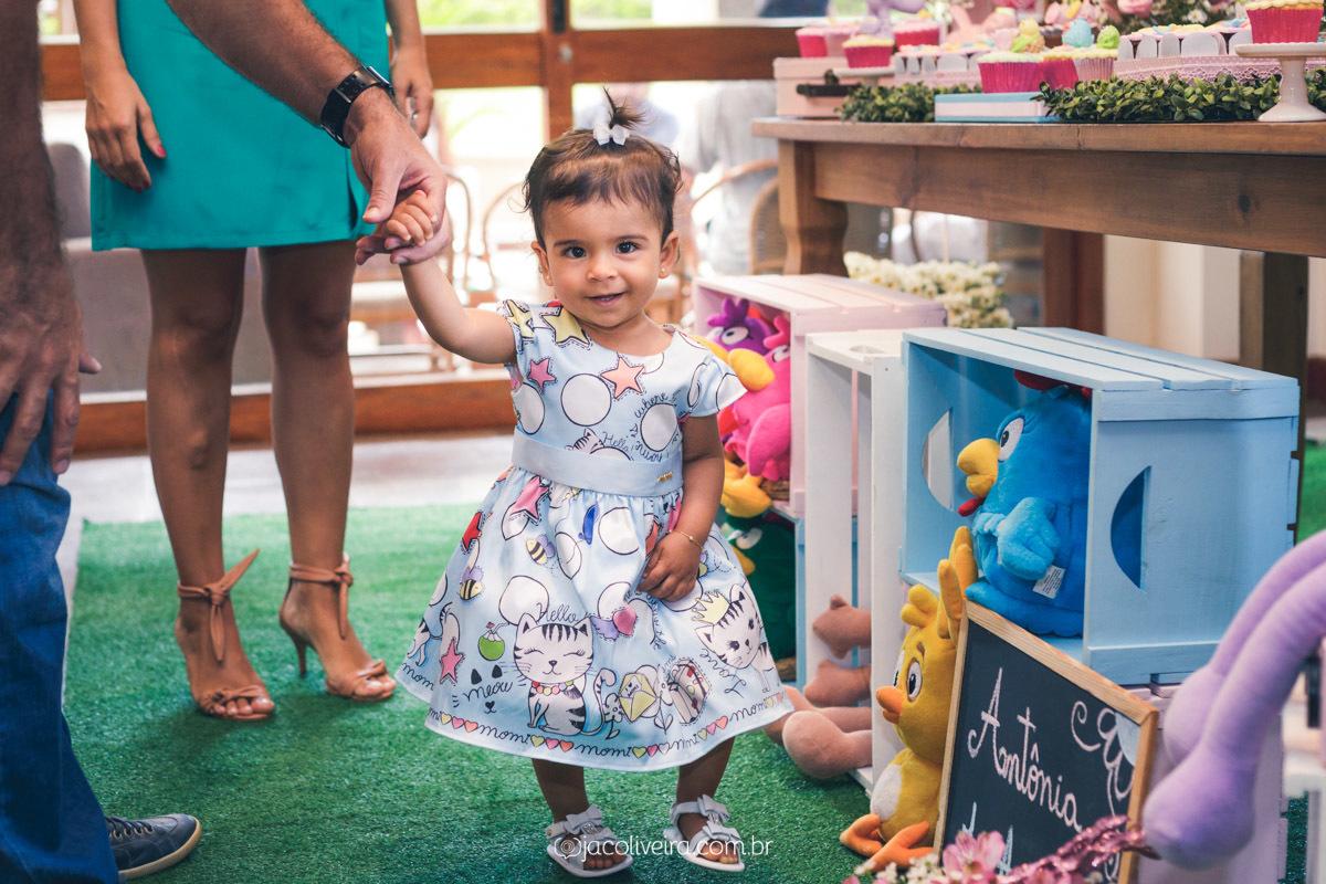 fotógrafo porto alegre festa infantil fotos lindas