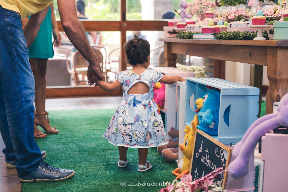 fotografo porto alegre festa infantil antonia na decoracao galinha pintadinha candy color