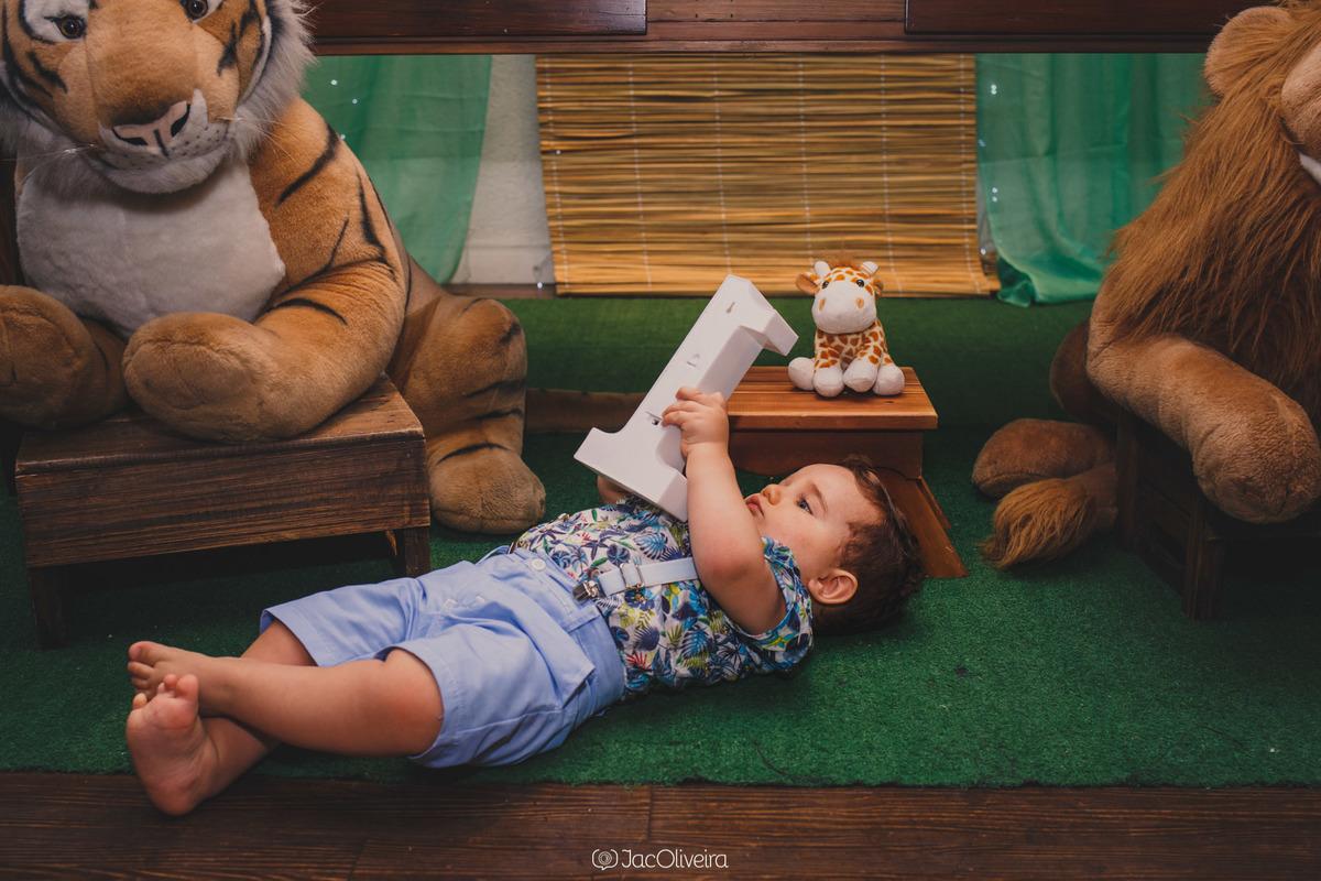 fotógrafa infantil porto alegre 1 aninho menino eduardo numero 1