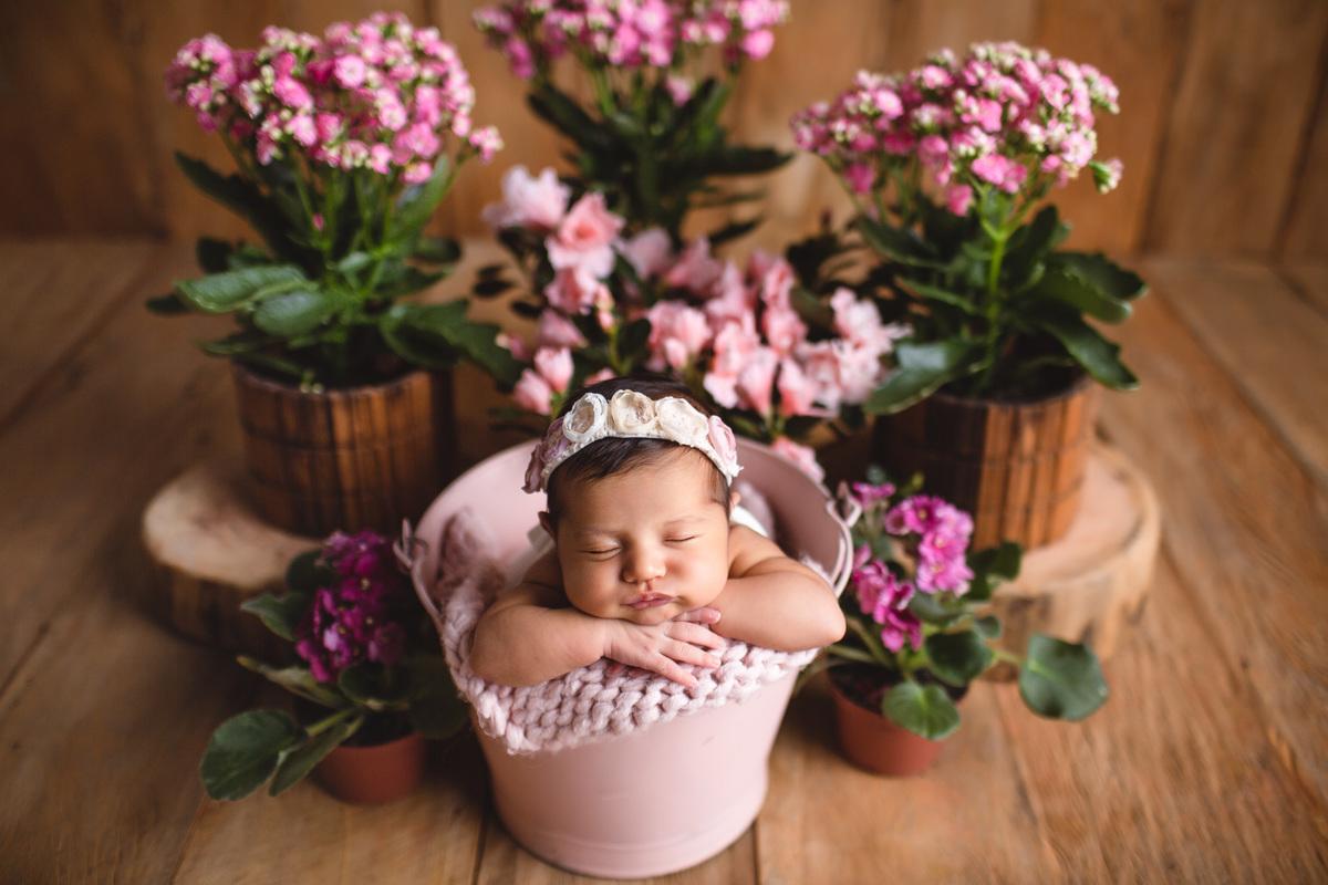 Imagem capa - {Newborn} Manuela, 18 dias por Bernazzi Fotografia