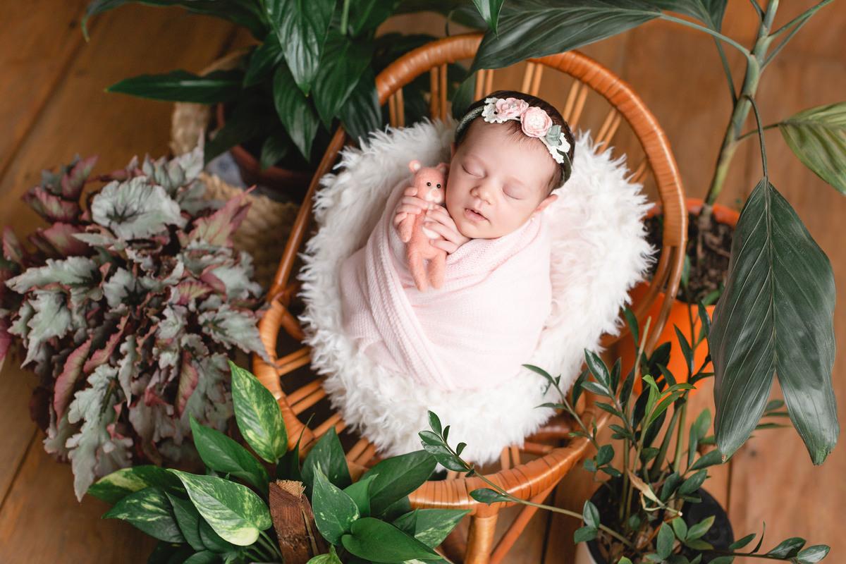 Imagem capa - { Newborn Alice 25 dias } por Bernazzi Fotografia
