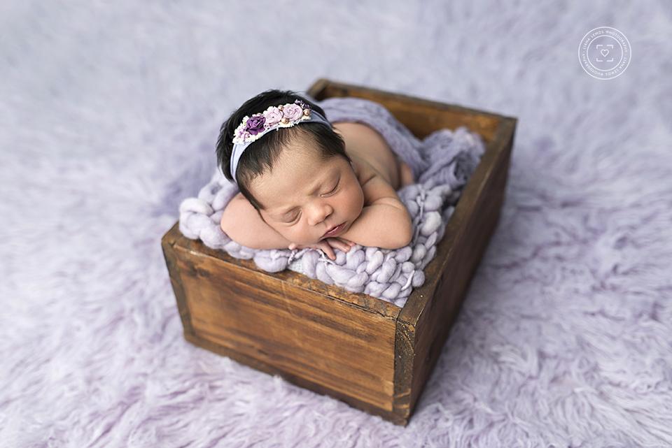 Imagem capa - Quero fotografar newborn! Que equipamento devo comprar? por LianaLemos