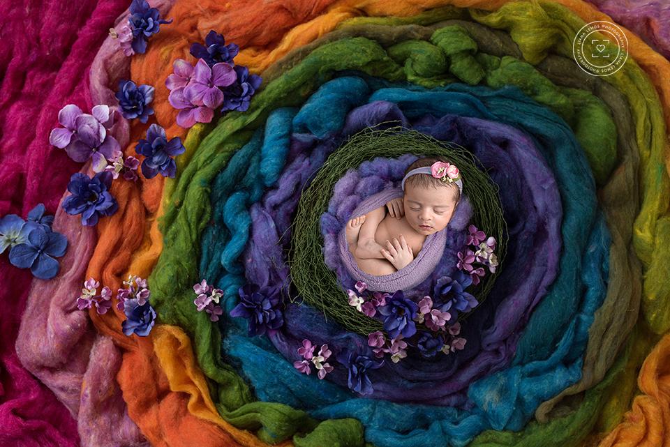 Imagem capa - Planos Newborn 2018 (Ficou mais fácil!) por LianaLemos