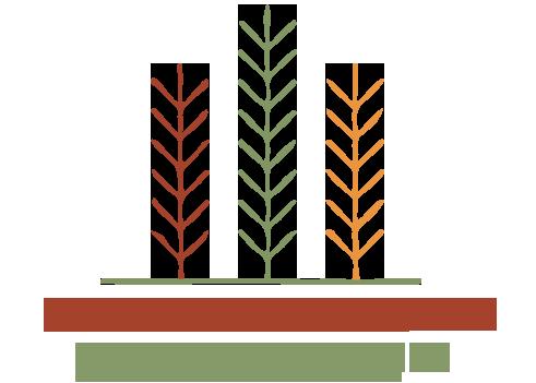 Logotipo de Anderson Pereira