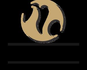 Logotipo de Neto Oliveira fotografia