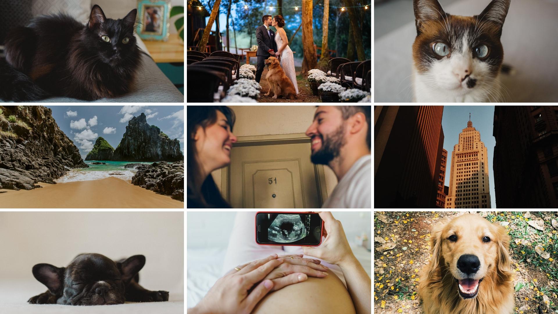 Sobre Fotografia de Casamento SP | Nath e Mario Lima | Foto e Filme