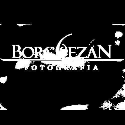 Logotipo de Reginaldo Borguezan