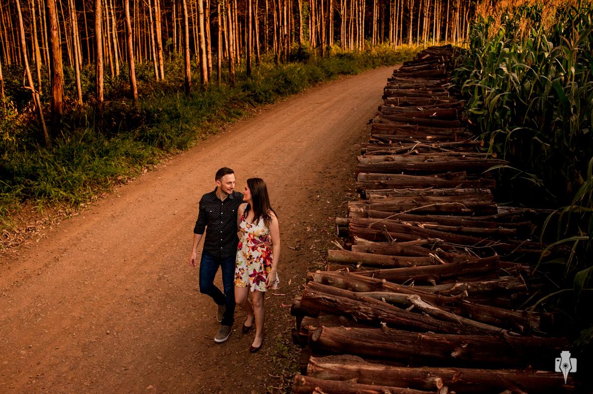 ensaio pré casamento de carol e régis no meio dos pinus