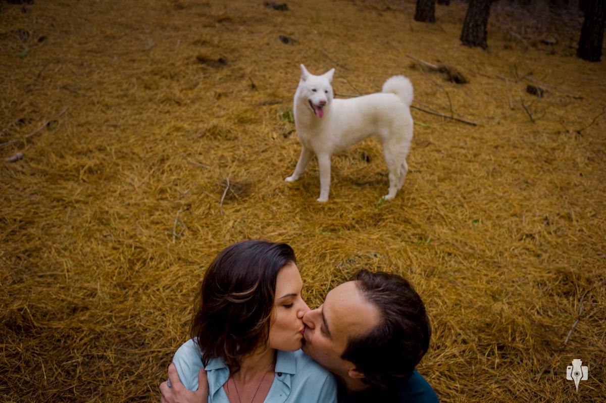 ensaio de casal pre casamento com cachorro no canions em cambara rs