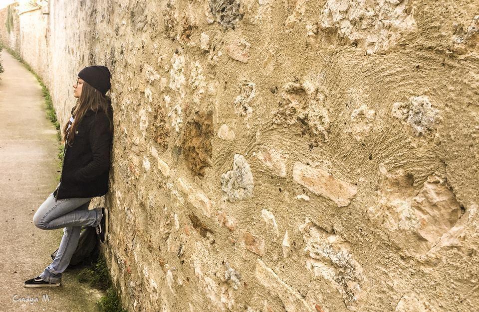 Imagem capa - San Gimignano: Uma Viagem a Era Medieval  por Cindya M