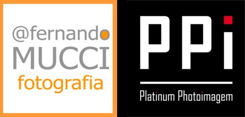 Logotipo de FERNANDO MUCCI