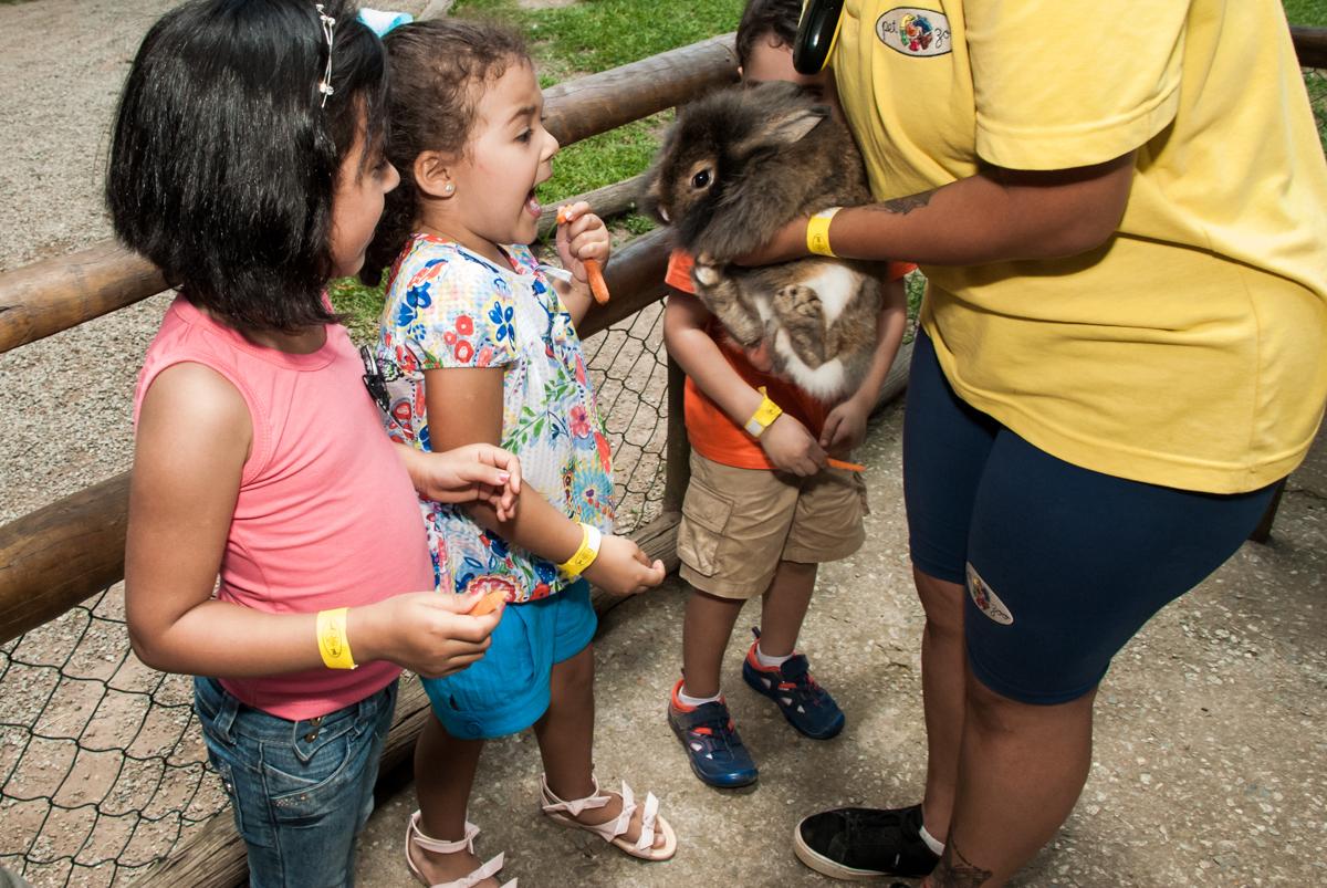 alimentando o coelho no Buffet Pet Zoo, Cotia, São Paulo, aniversário de Maria Clara 4 anos, Buffet Pet Zoo, Cotia, São Paulo, tema da festa Dora a Aventureira