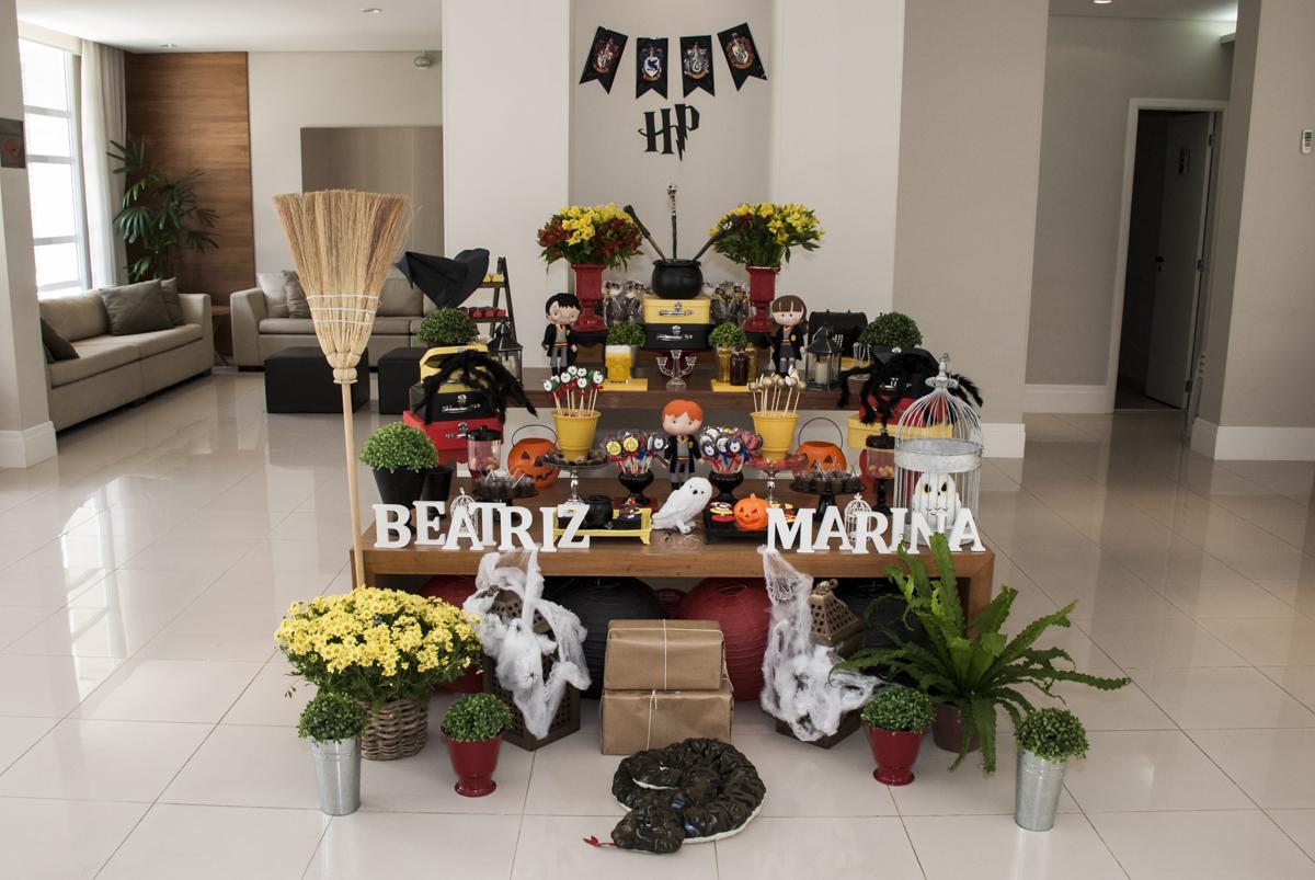 Aniversário de Beatriz e Marina 8 anos, Festa realizada no condomínio Jabaquara, São Paulo, tema Harry Potter