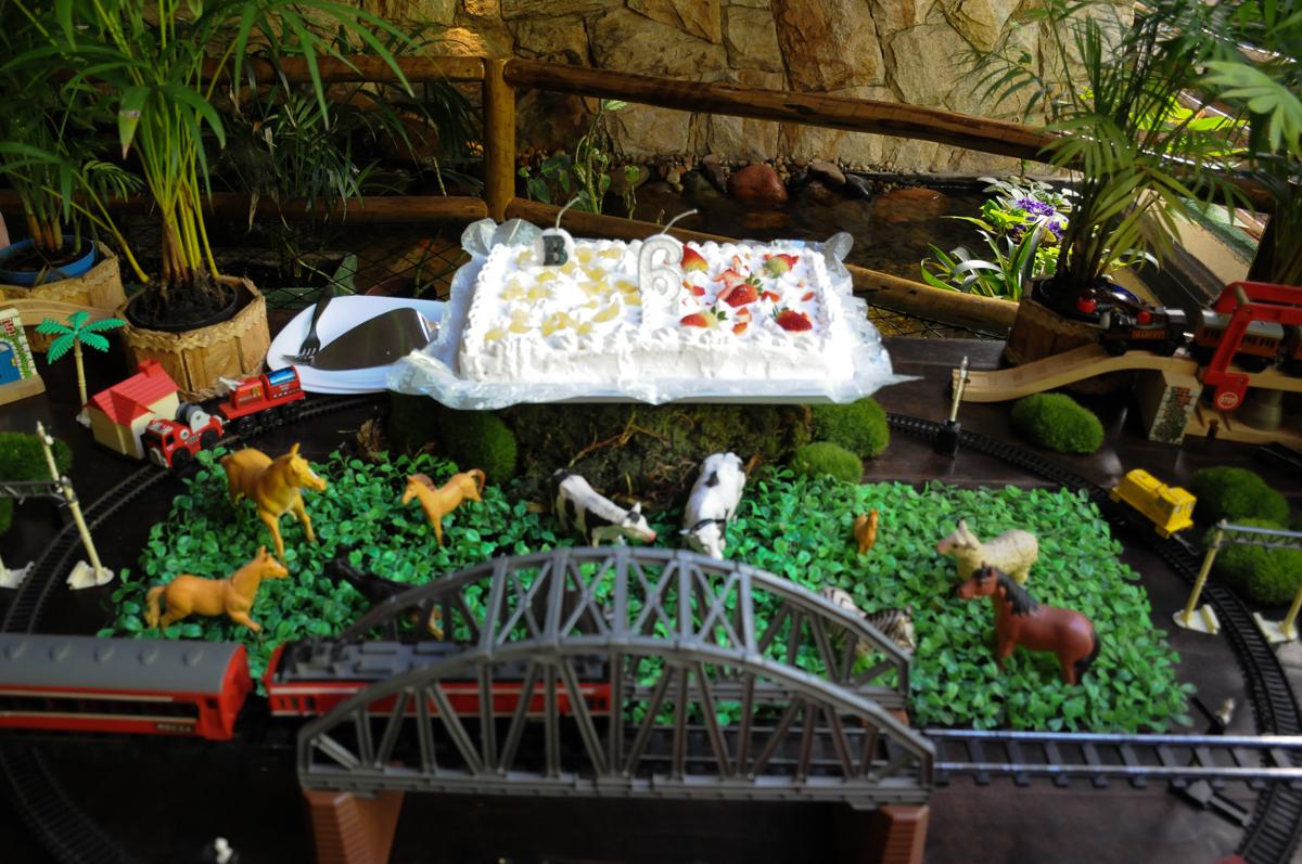 bolo do aniversário do breno no Buffet Saphari - Campo Belo