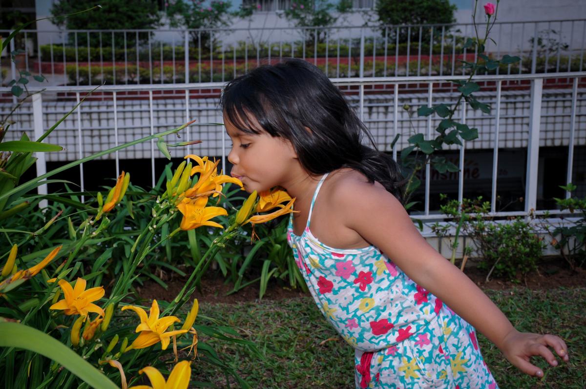 foto  beijando a flor no jardim no condomínio,Saude,São Paulo