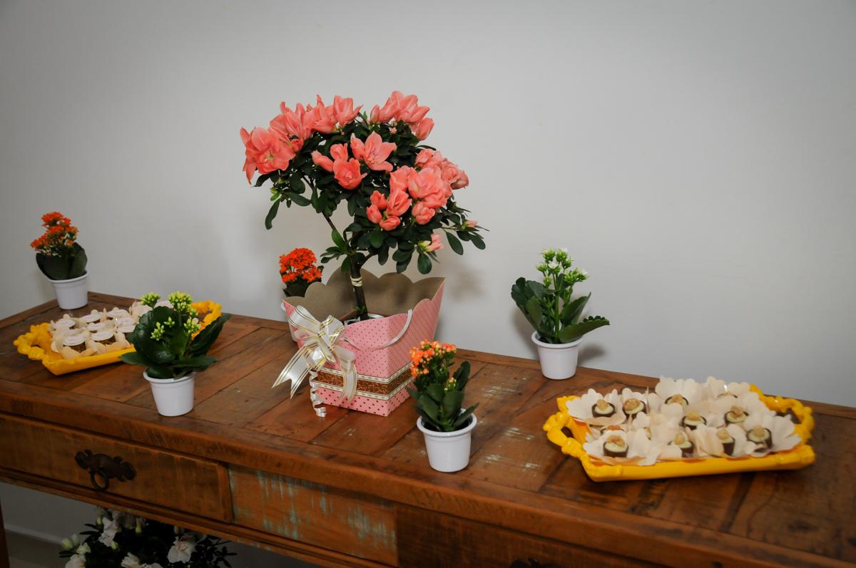 detalhes da decoração da Festa infantil Paulina Chieko 5 anos, condomínio Saúde, São Paulo, SP, tema da festa meninas super poderosas