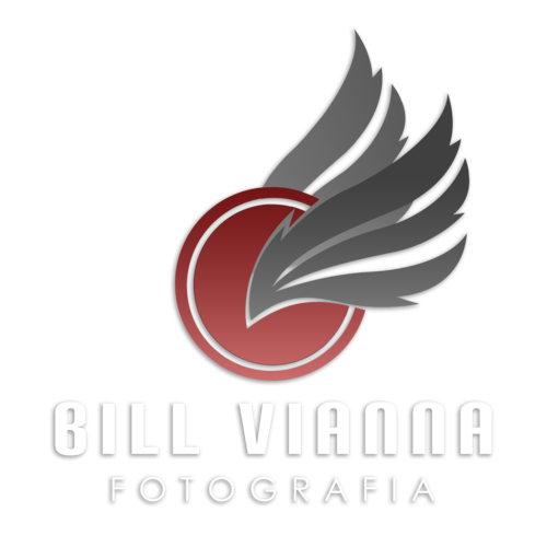 Logotipo de Bill Vianna