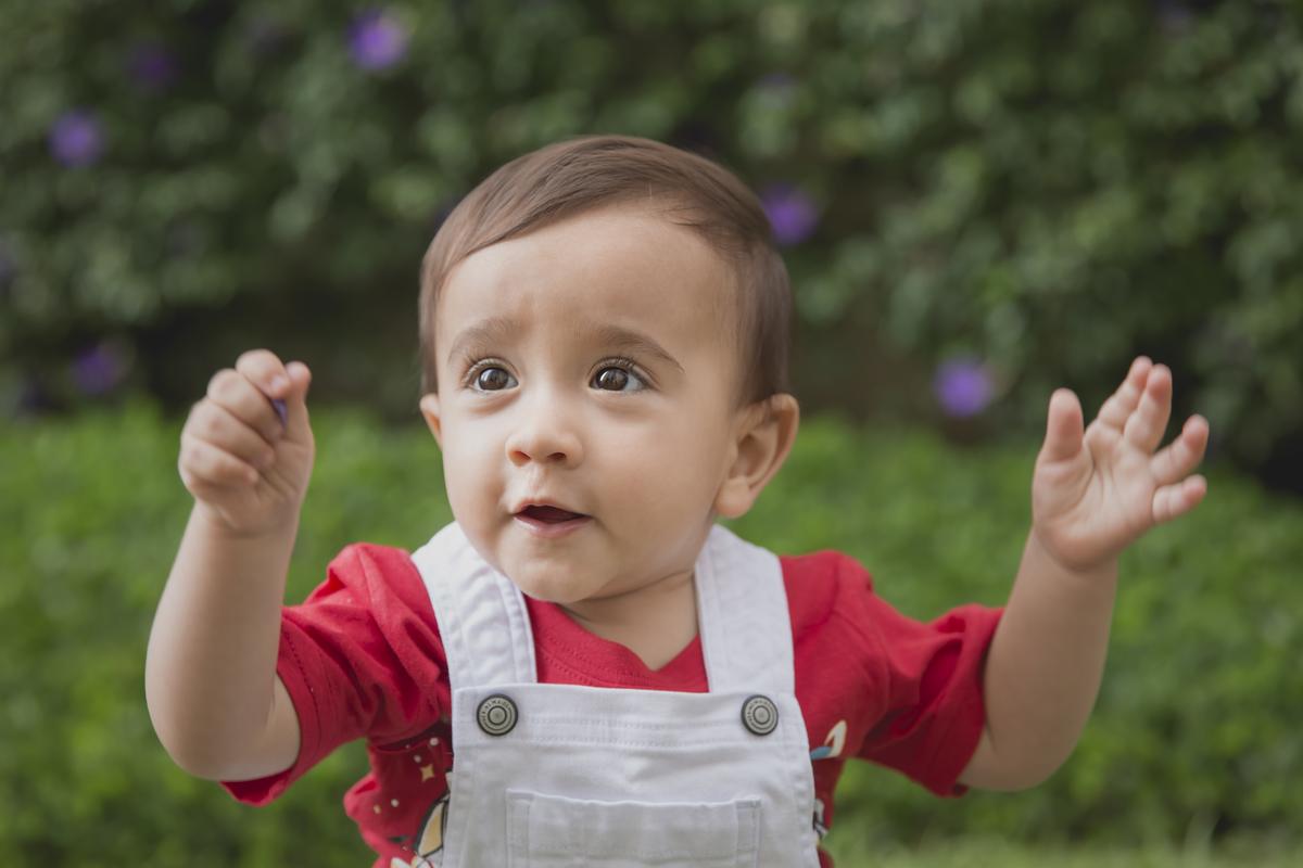 Imagem capa - Ensaio dos 12 meses do bebê por Amanda Predebon Inke