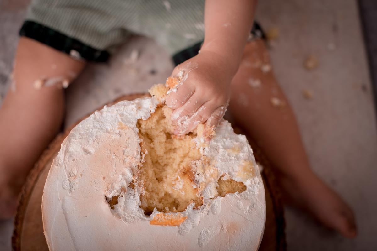 cake smash,mae de menin0, bosque, festa bosque, salao de festas em jau, fotografo em jau, festas em jau, buffet em jau, sessão de fotos de um aninho, fotografia infantil, renata serafim, festa em bauru, salão de festas em bauru, tema bosque, cake smash