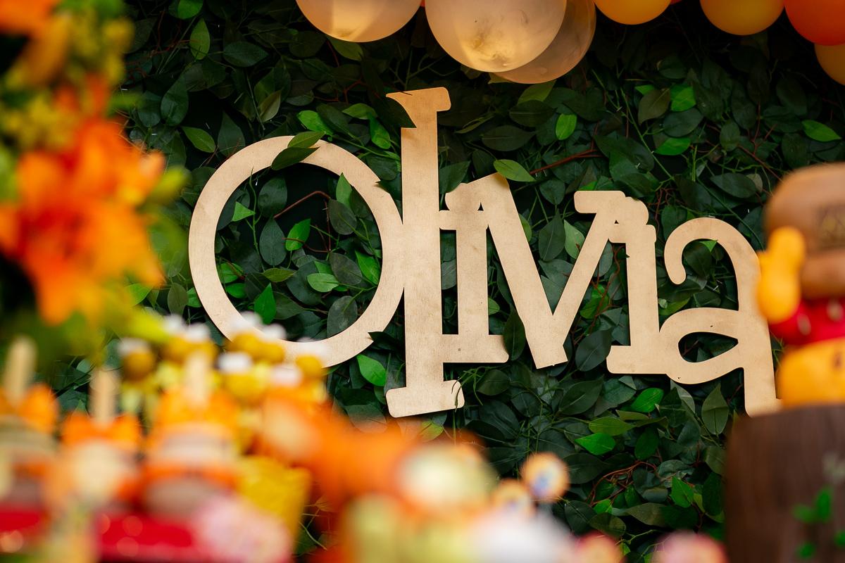 Imagem capa - Ursinho Pooh; uma decoração nada comum por Teca Avelar Fotografia