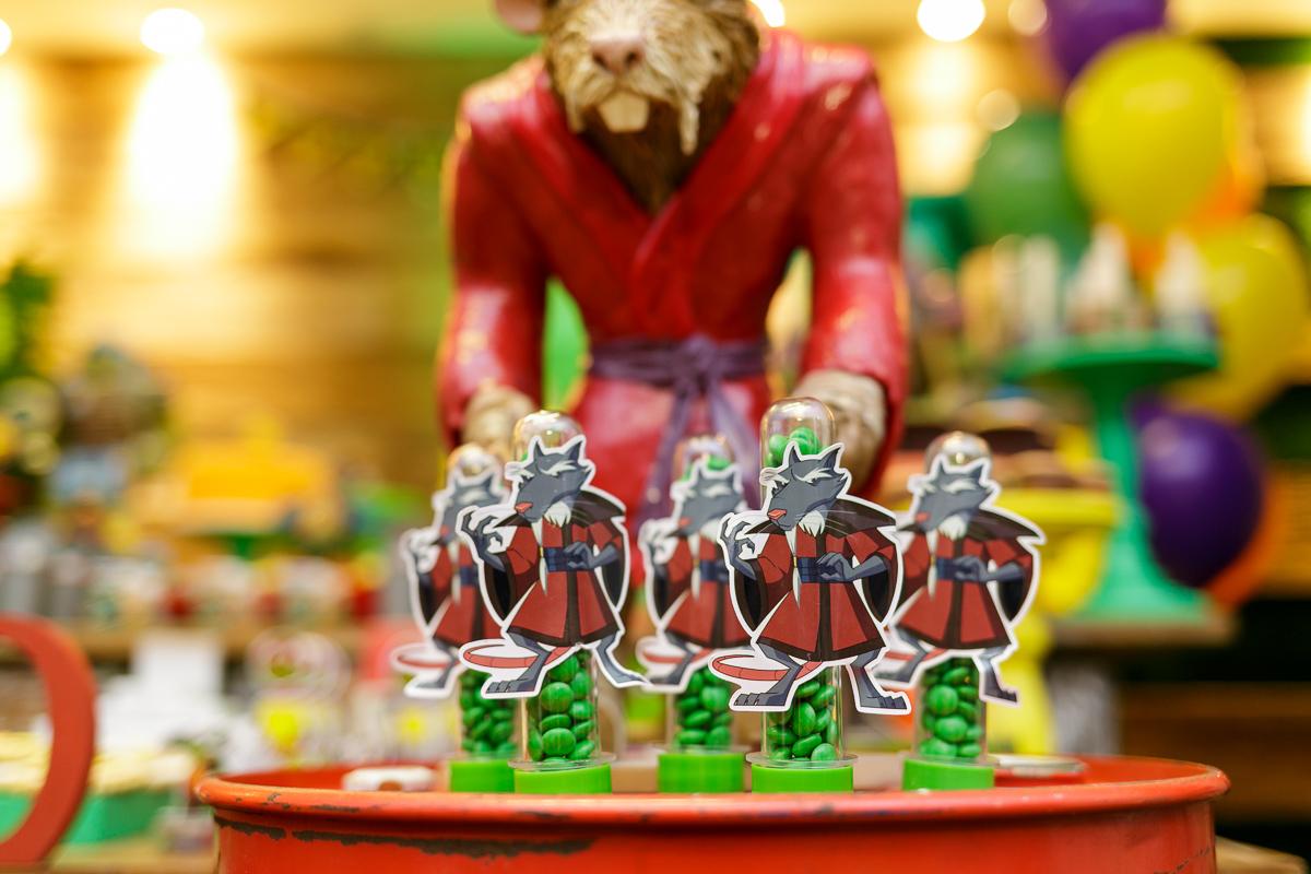 Imagem capa - Tartarugas Ninja; eles estão de volta! por Teca Avelar Fotografia