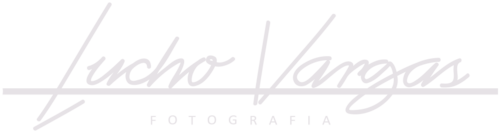 Logotipo de Luis Ysrael Giron Vargas