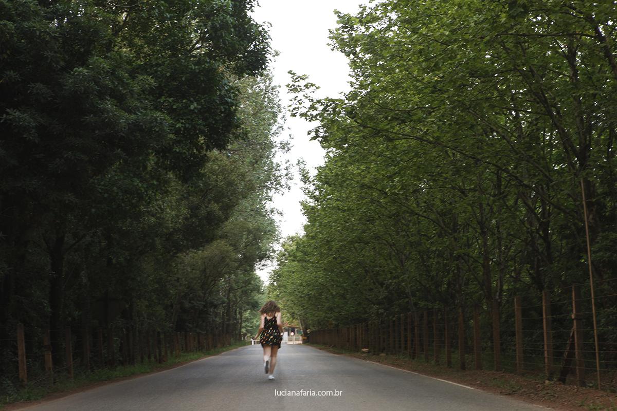 sessão de fotos de 15 anos na estrada da represa bortolan em poços de caldas menina correndo na estrada