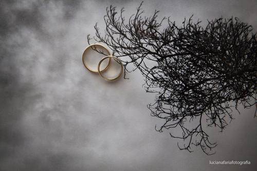 Contate Luciana Faria - fotógrafa de gestante, família, ensaio documental, infantil, casamentos,  Poços de Caldas - MG, São João da Boa Vista-SP Campinas-SP