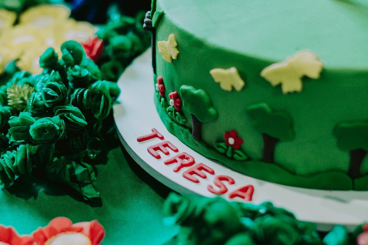 Imagem capa - Teresa 1 Ano - Floresta Tropical por Marcelo Cortez - Fotografia
