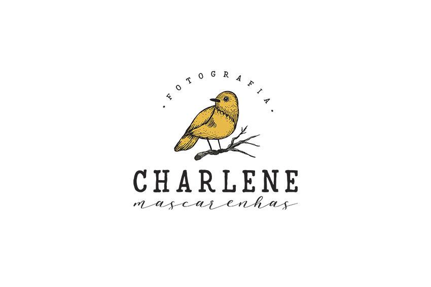 Imagem capa - Temos um instagram exclusivo para os ensaios Newborn e de bebês por Charlene Mascarenhas