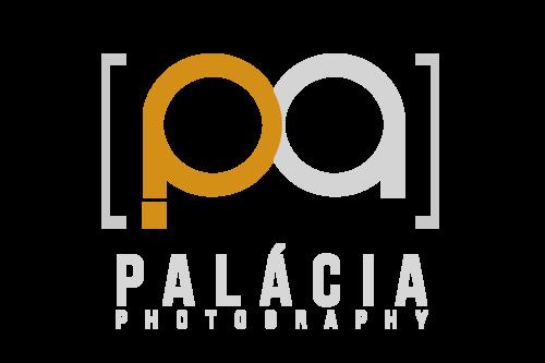 Logotipo de Palmério de Jesus Junior