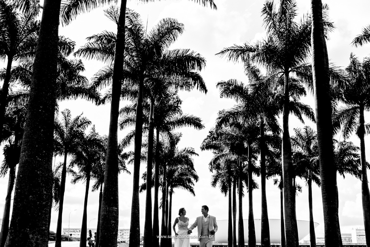 Entre as palmeiras eles correm de mãos dadas rumo a uma vida a dois.