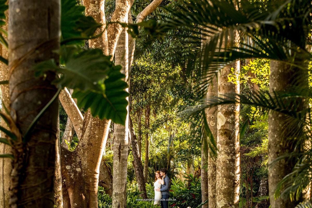Apaixonados eles parecem estar no meio da Amazônia, mas não, eles estão apaixonados em meio a um lindo jardim com muitas palmeiras.