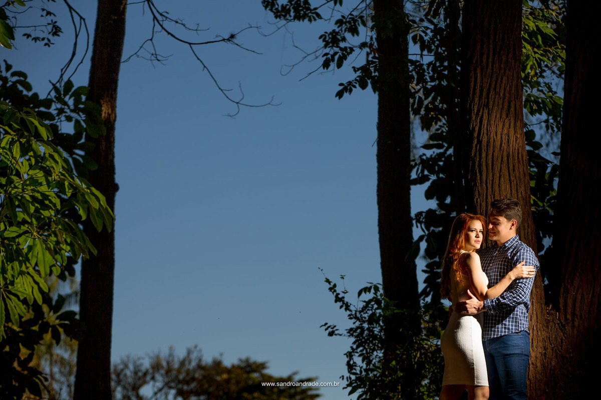 Uma fotografia linda colorida, com céu azul, arvores verdinhas e um lindo casal no canto direito.