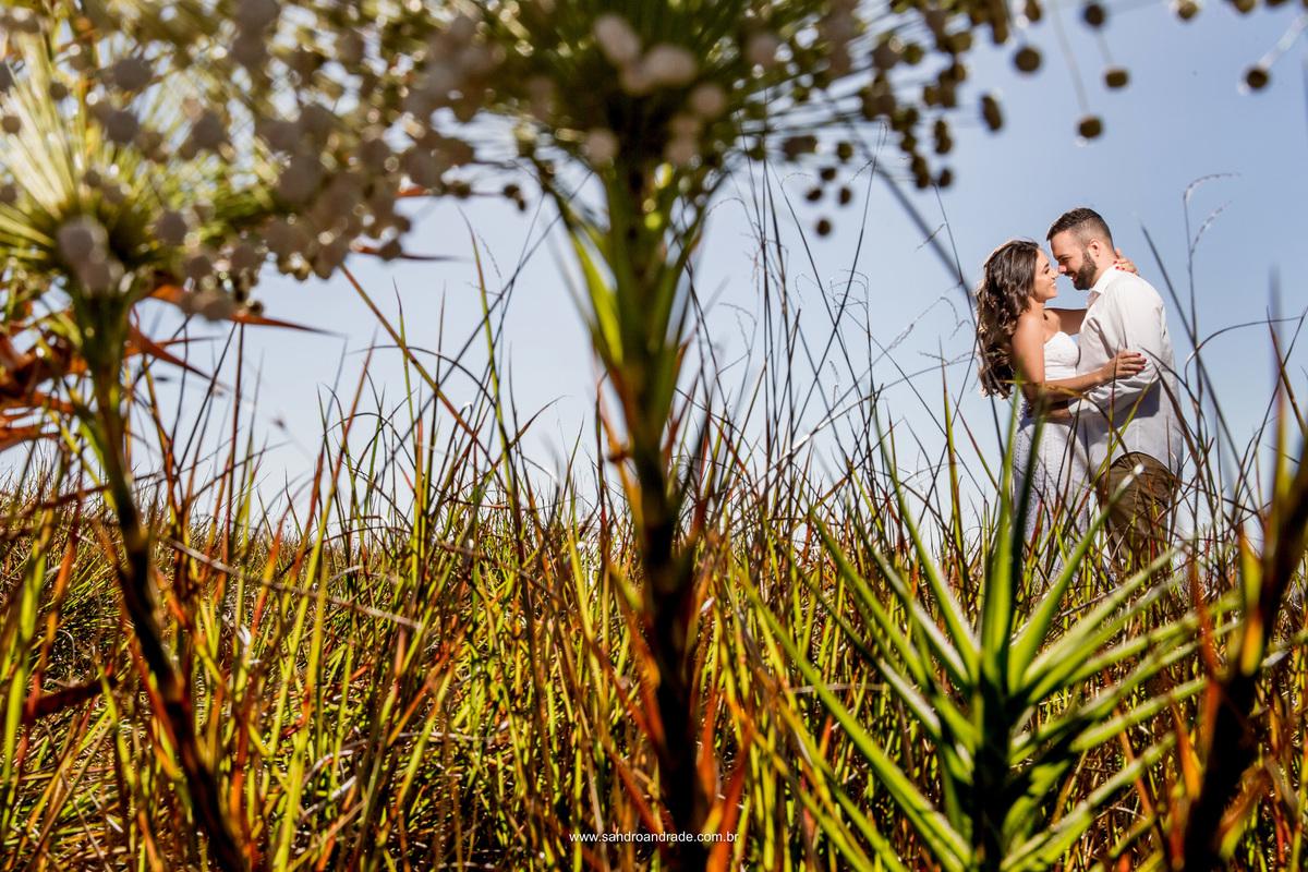 O casal abraçado em meio ao gramado com uma linda flor flor do serrado e troca de olhar apaixonado.