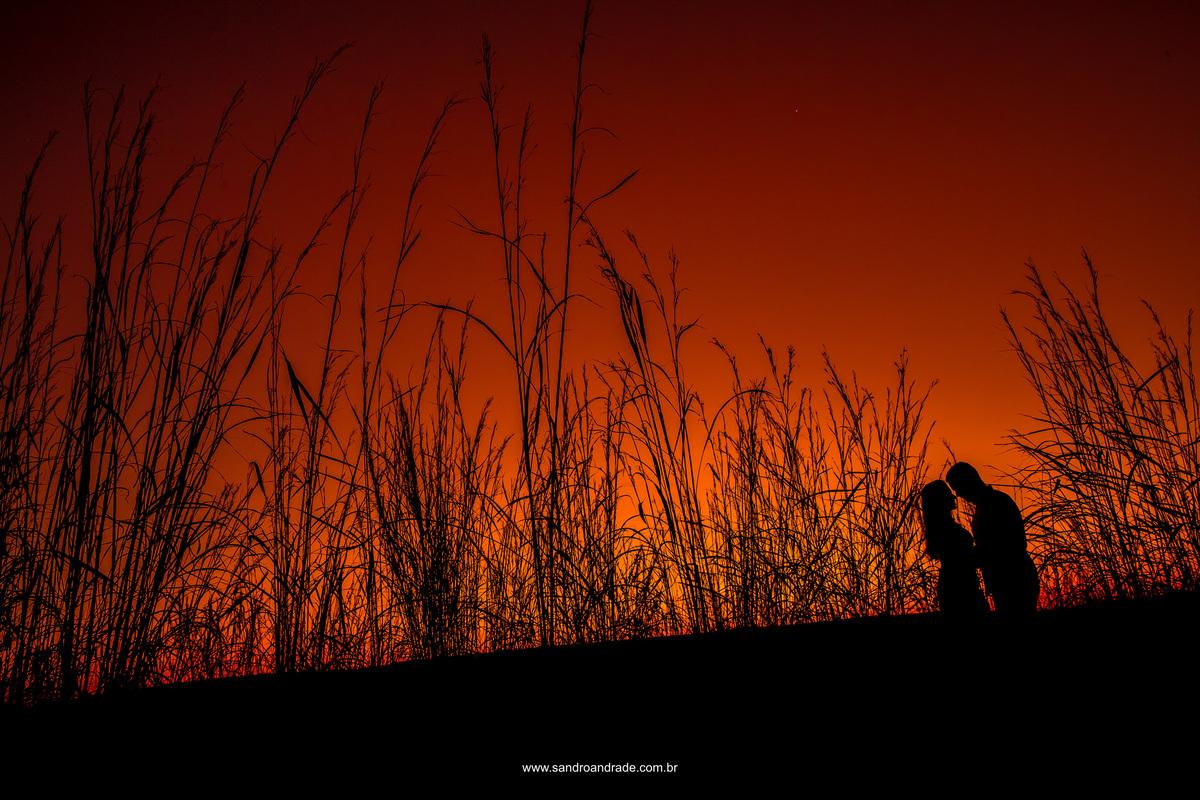 Silhueta pra que te quero? Um céu em tons de vermelho e laranja, mato alto e uma silhueta linda do casal.