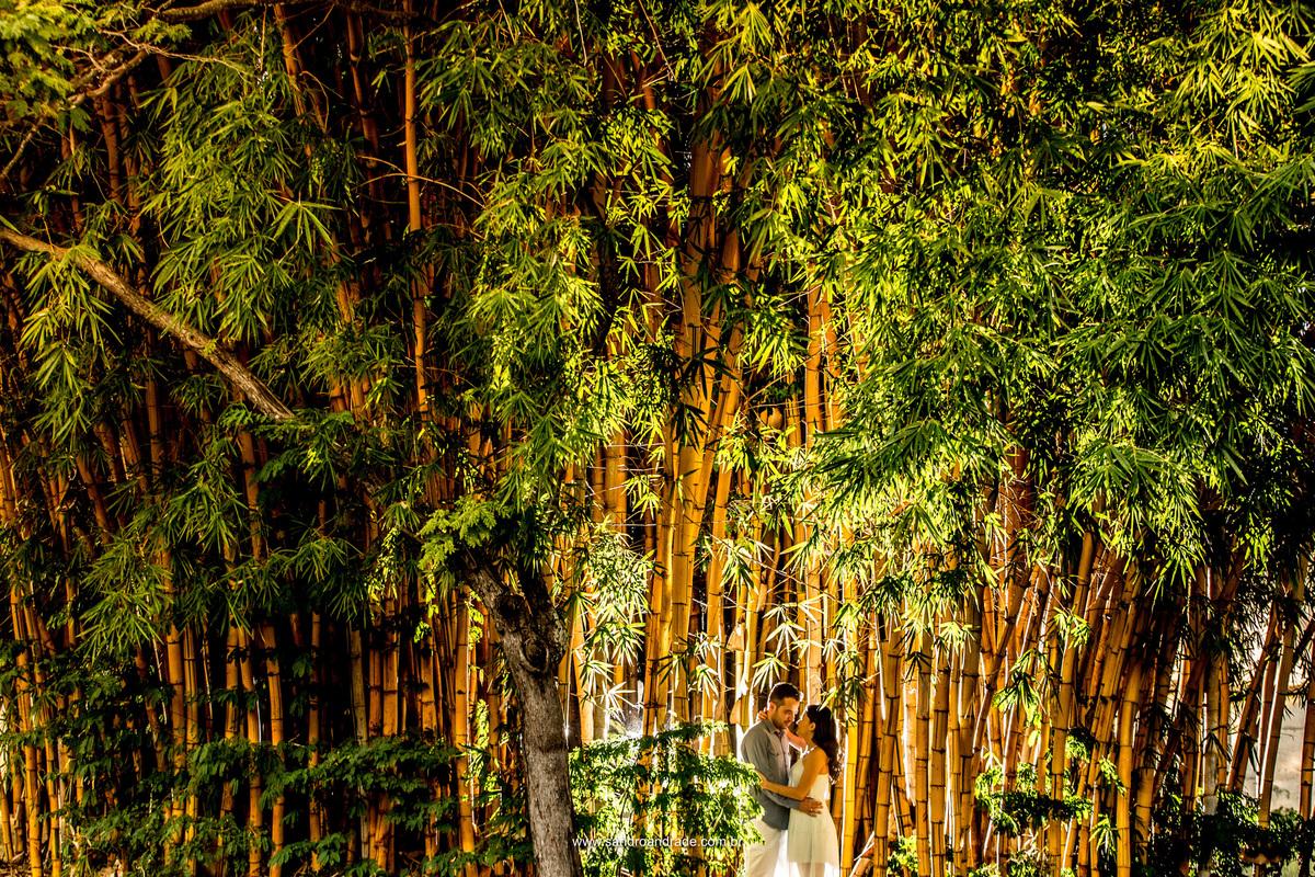 Muitos bambus, uma linda contraluz e um amor. Muitooo verde e uma criatividade imensa é o que vemos nesta fotografia.