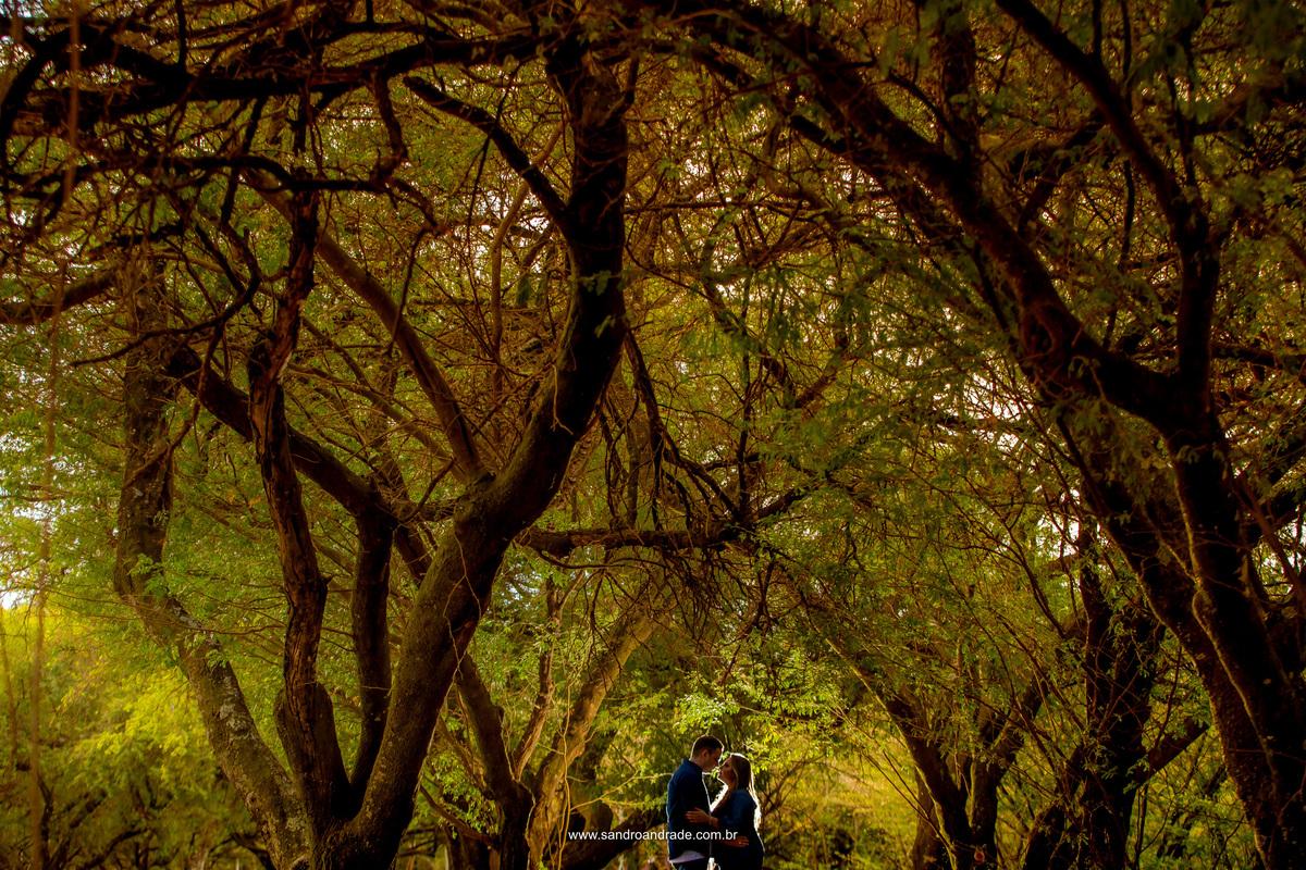 Linda fotografia colorida do casal se olhando, onde Sandro Andrade fotografo de casamentos em Brasilia, fez uma linda contra luza nos noivos.