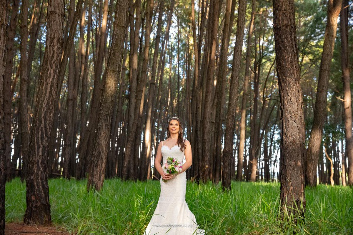 Em meio a plantação de pinheiro na frente da Villa Giardini, uma noiva linda, arvores de troncos altos e verde rasteiro.