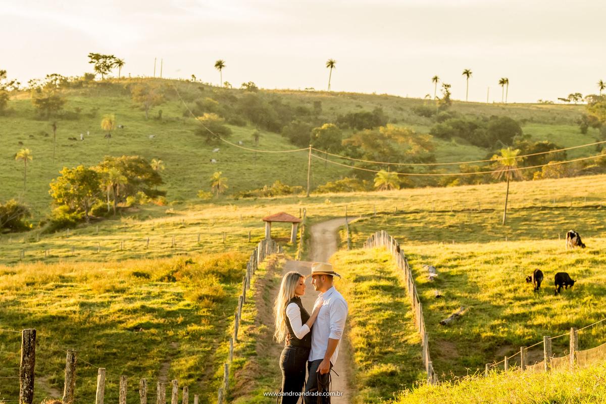No meio da fazenda, muito verde e o gado, eles trocam olhares de amor.