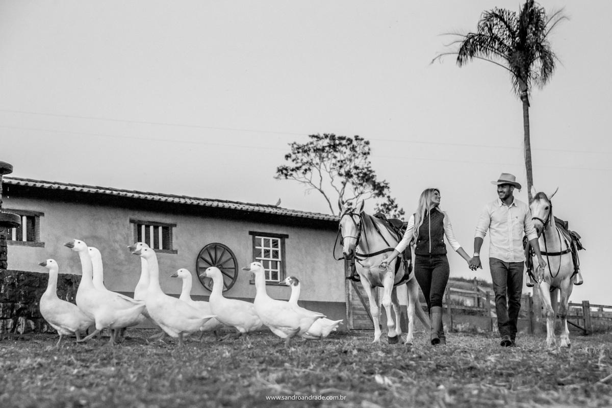 Muito amor, animais, fazenda, amo fazendas e essa foi digna desse lindo ensaio, desse maravilhoso casal.