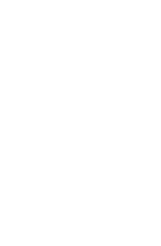 Logotipo de Ale Ruaro