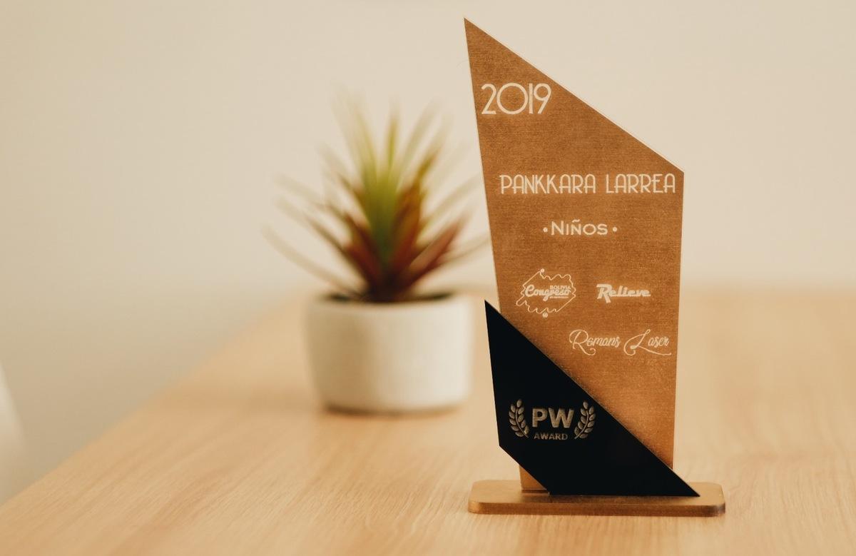 Imagem capa - Photowedd Award 2019 por Pankkara Larrea