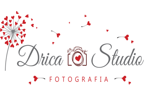 Logotipo de DRICA STUDIO LTDA